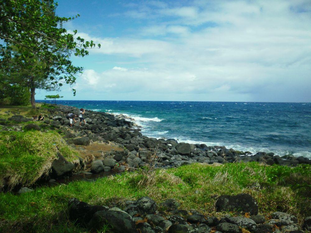 5 raisons de visiter la Réunion